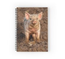 Inquisitive Piglet in field Spiral Notebook