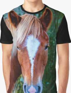 New Forest Pony Graphic T-Shirt
