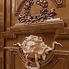 Imposing door knocker by bubblehex08