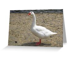 A Majestic Goose Greeting Card