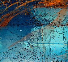 Over the Rainbow by DebraLee Wiseberg