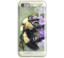Bumble Bee Beauty iPhone Case/Skin