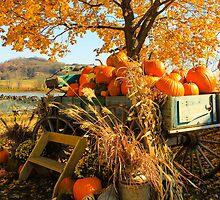 Autumn splendor... by grantsphoto