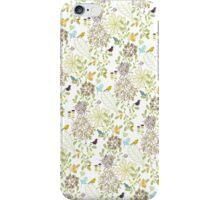 iPhone Case: Find The Birds iPhone Case/Skin