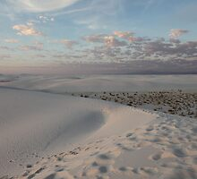 Dusk in the White Sands National Monument by Robert Stephens