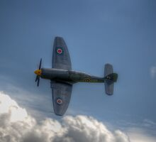 Hawker Sea Fury Pass by Nigel Bangert