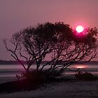 Brilliant sunset by Tricia Holmes