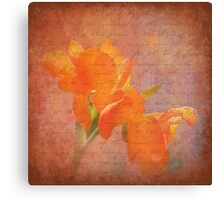 Peach Dream Canvas Print