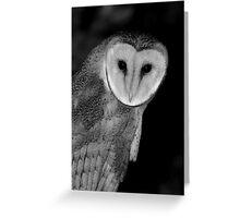 Barn Owl B&W Greeting Card