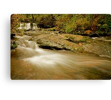 Lower McDowell Creek Falls Canvas Print