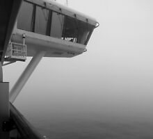 From the Bridge ~ Always Vigilant by Lucinda Walter