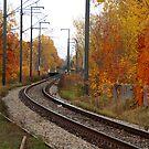 The Rails in Autumn by Joanne  Bradley
