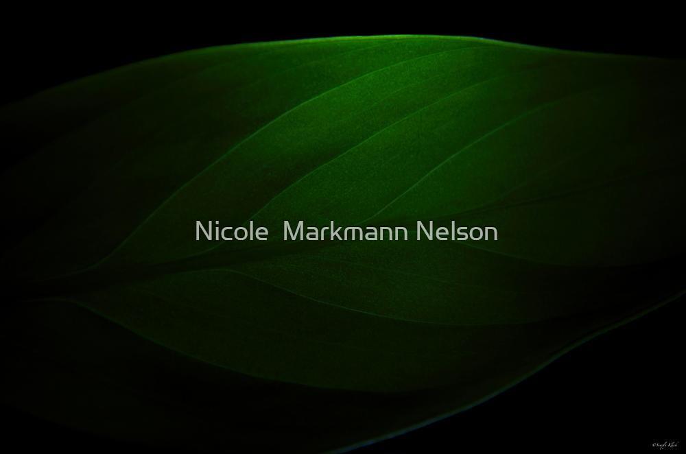 Einblatt  by Nicole  Markmann Nelson