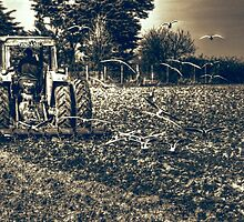 Following the Plough by Nigel Bangert