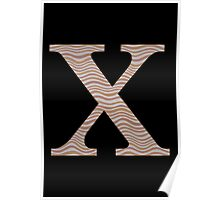 Letter X Metallic Look Stripes Silver Gold Copper Poster