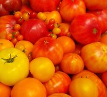 Totally Tomatoes by Betty Mackey