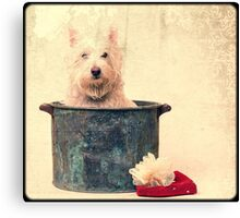 Vintage Bathtime Canvas Print