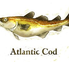 Atlantic Cod Painting by astralsid