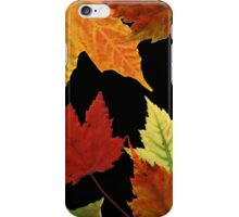 Fall Colors on Black iPhone Case/Skin