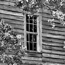 Face In The Window by ©Dawne M. Dunton