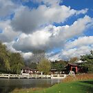 Chinese Garden in November by orko