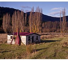 Derelict House, Hops Field, Tasmania Photographic Print