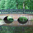 Bridge over stagnant water by Arie Koene