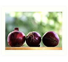 red onions ready to be chopped... Art Print