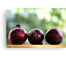 red onions ready to be chopped... Canvas Print