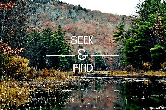 Seek & Find  by Vintageskies