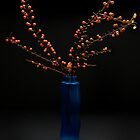 Cotoneaster in blue vase by Bruce Walker