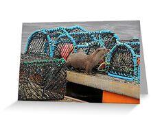 Otter, Lunna, Shetland Greeting Card