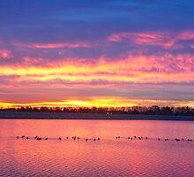 Lagerman Reservoir Sunrise  by Bo Insogna
