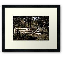 Unhinged Framed Print