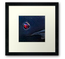 A Loon's Eye View Framed Print