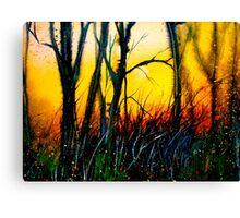 Cold Fire.. Canvas Print