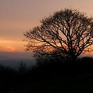 End of the Day by RoystonVasey