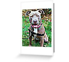 Pit Bull Rescue Beauty Greeting Card