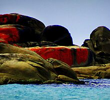 Bay of Fires....granite splashed with orange lichen by myraj