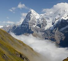 Verdant meadows below the Eiger in Switzerland by David Galson