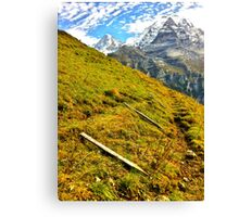 Cow fences down for the winter, Wengen Switzerland Canvas Print