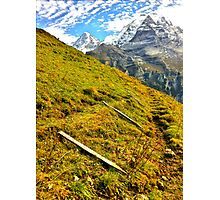 Cow fences down for the winter, Wengen Switzerland Photographic Print