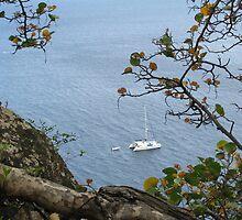 Ladder Bay Catamaran by KimSha
