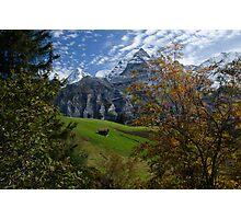 Swiss Fall Meadow below Eiger Photographic Print