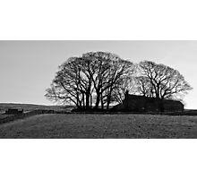 Wharfedale farm Photographic Print
