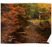 Creek at Cuttalossa Poster