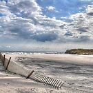 Beach Fence by Monte Morton