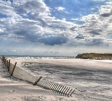 Beach Fence by Monte Morton