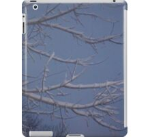 Winter Sky with Branches iPad Case/Skin