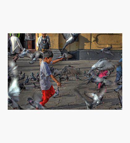 Pigeon Play - Iglesia de San Francisco - Lima,Peru Photographic Print